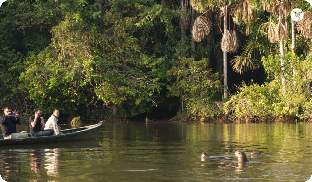 tambopata reserve zone
