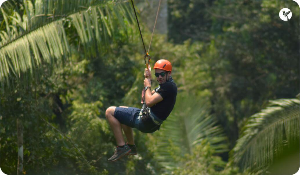 zip-line-in-the-jungle.jpg